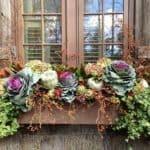 I just Love a Gorgeous Autumn Window Box